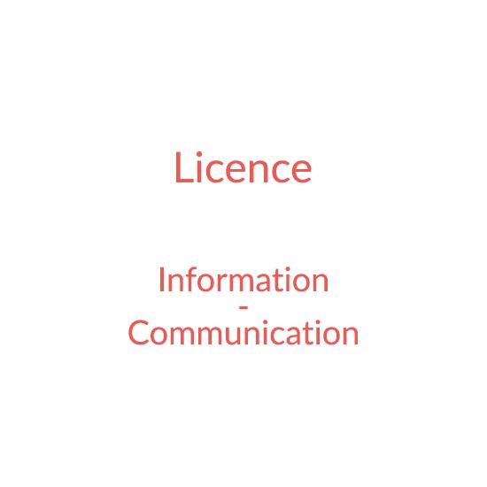 Licence Information et communication